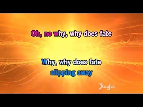 Karaoke What Have You Done - Within Temptation *