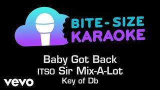 Sir Mix-A-Lot - Baby Got Back (Bite-Size Karaoke)