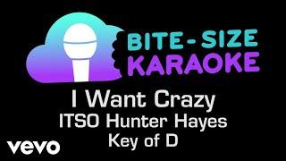 Hunter Hayes - I Want Crazy (Bite-Size Karaoke)