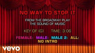 The Sound Of Music - No Way to Stop It (Karaoke)