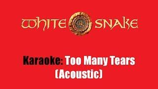 Karaoke: Whitesnake / Too Many Tears (Acoustic)
