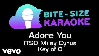 Miley Cyrus - Adore You (Bite-Size Karaoke)