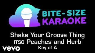 Peaches & Herb - Shake Your Groove Thing (Bite-Size Karaoke)
